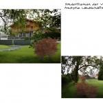 3D-Visualisierung in der Grünplanung